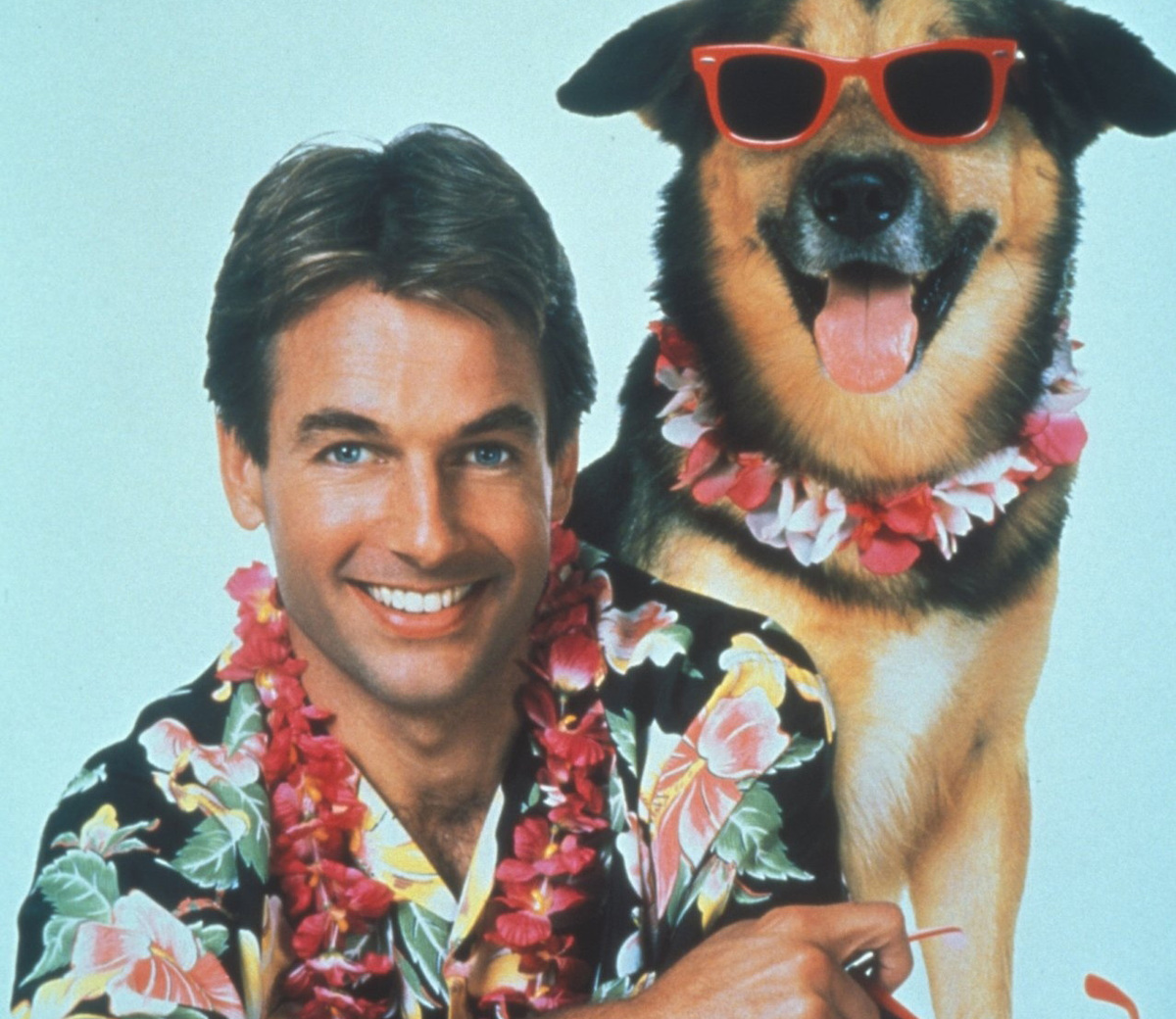 mark harmon starred in the 1987 film summer school