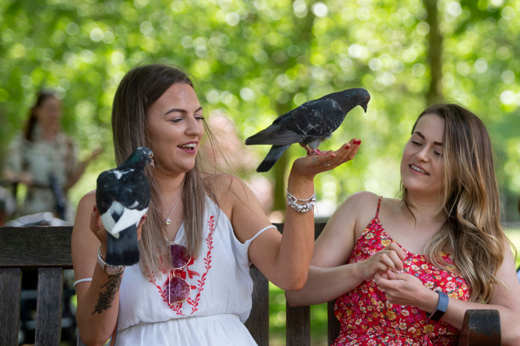 GettyImages-1152506150 girls with pigeons