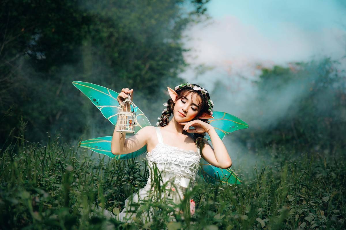 a fairie in a field
