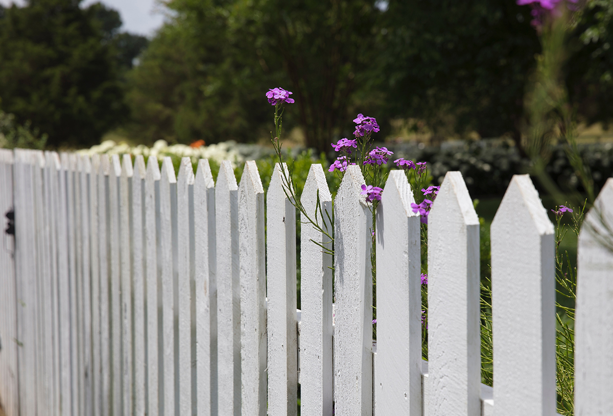 creepy-neighbor-fence