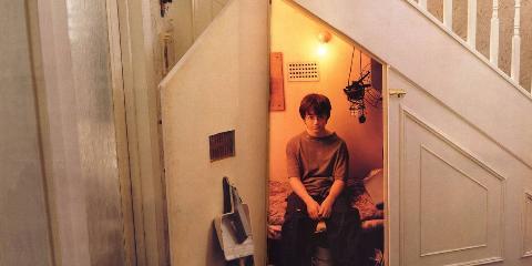 Harry In The Cupboard