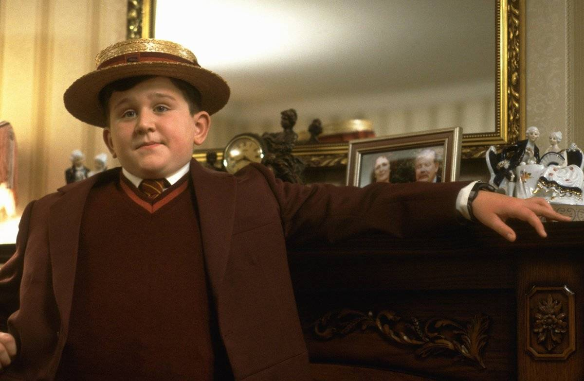Dumbledore Sat Back And Watched The Dursley's Abuse Harry