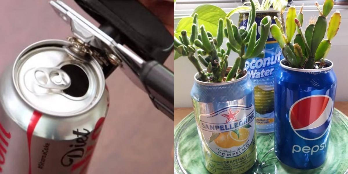 Make A Garden In A Can