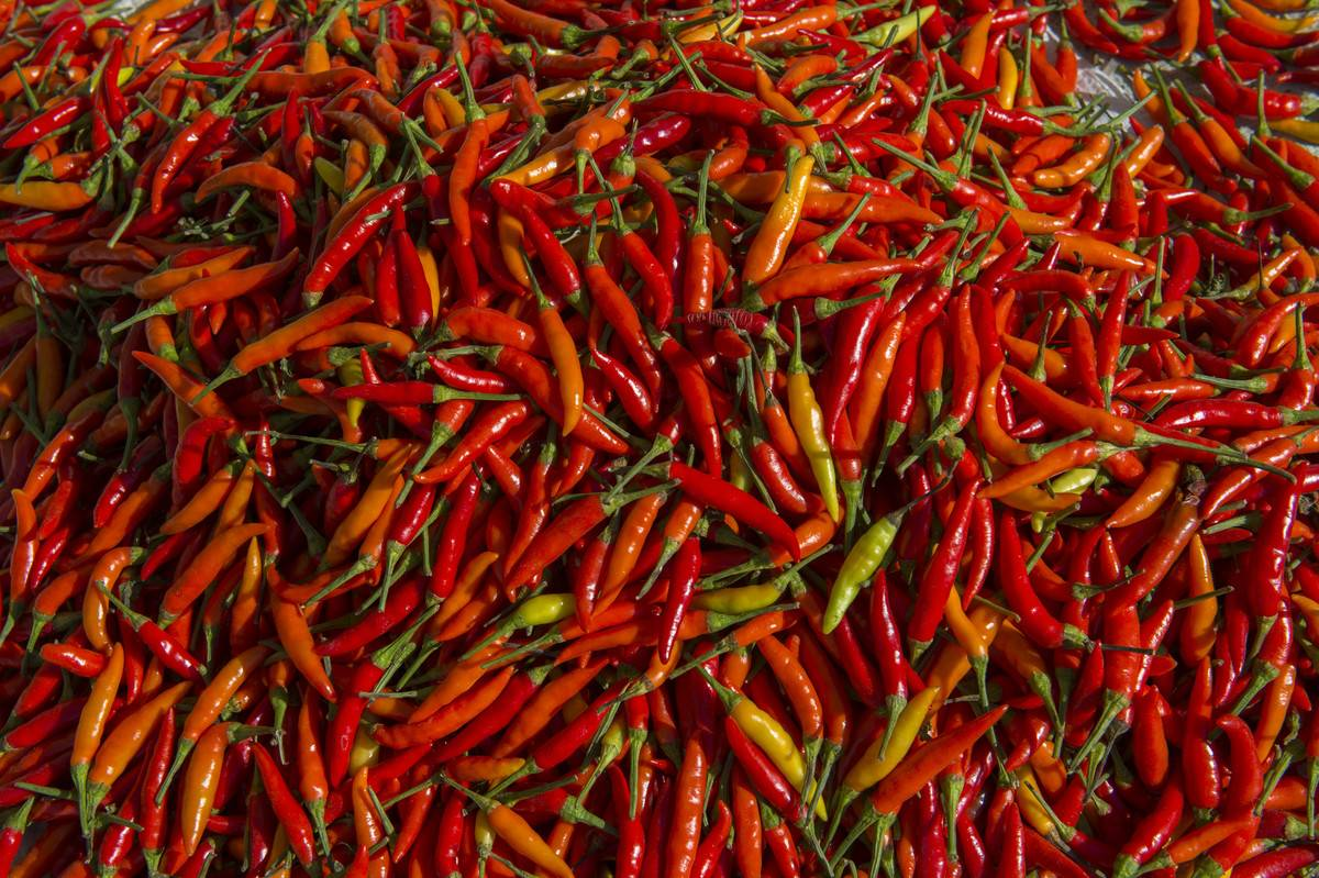 Six To Seven Types Of Hot Peppers Are Always In The Fridge