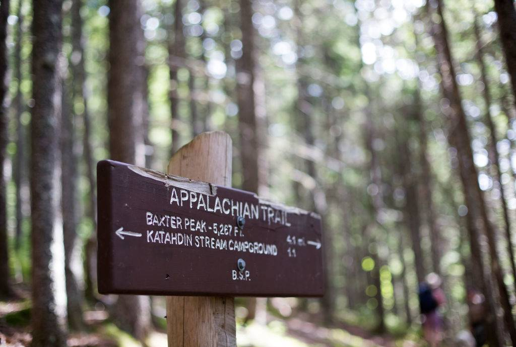 A sign post directs hikers on the Hunt Trail, a section of the Appalachian Trail