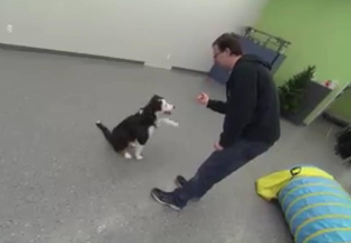 Jodoin gives Vango a treat.