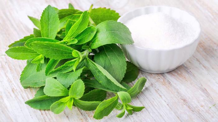 Stevia, an Alternative to Sugar