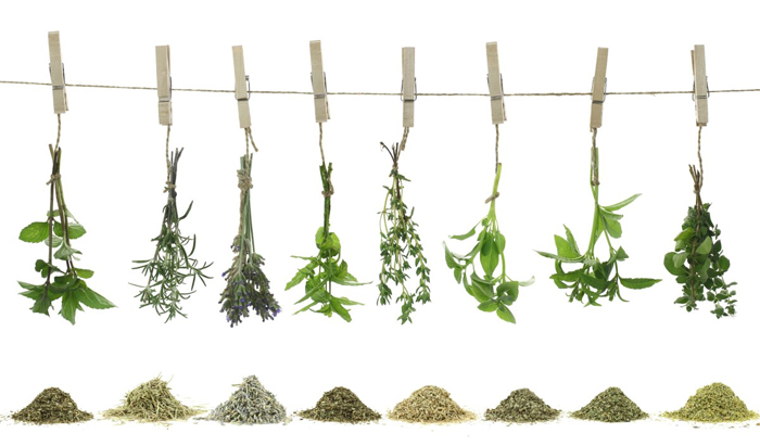 You Can Substitute Salt With Fresh Herbs