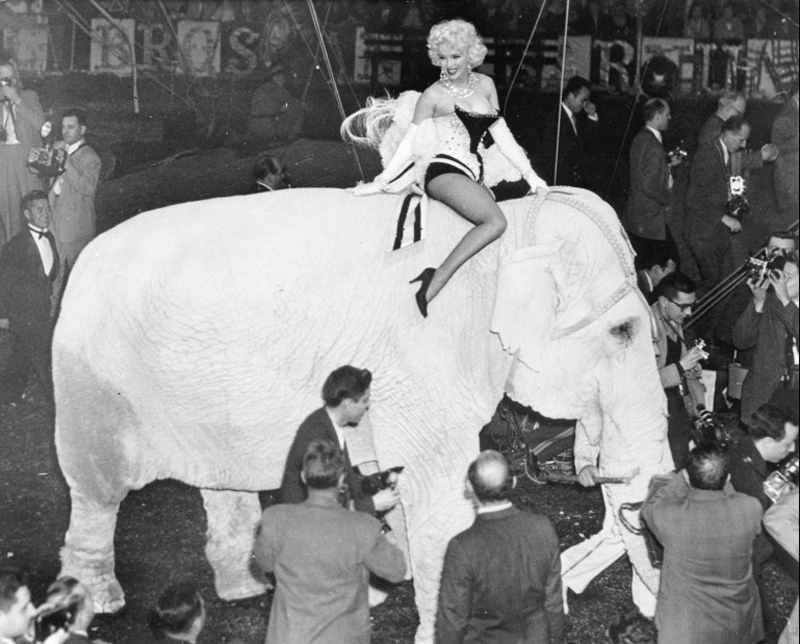Marilyn Monroe Rides Elephant at Opening