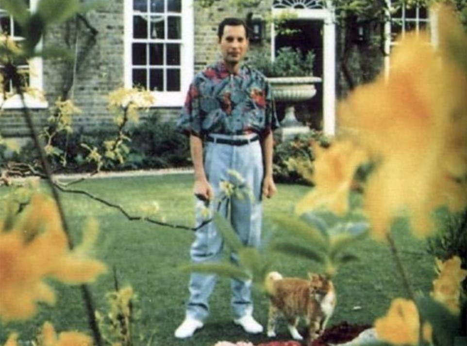 Freddie Mercury: A True Performer