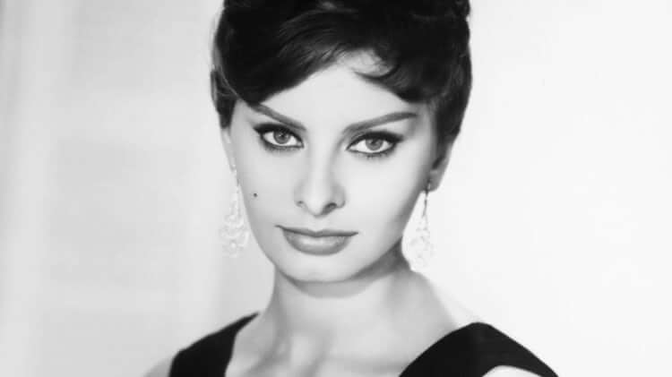 Sophia Loren Spent Time In Italian Prison For Tax Evasion — But She Was Innocent