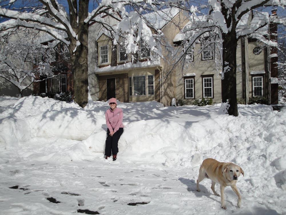 """Snowmageddon"" of 2010.JPG"