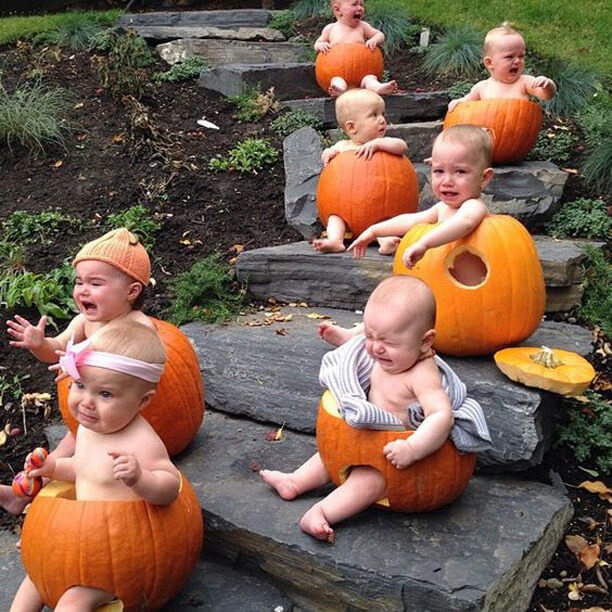 Babies And Pumpkins