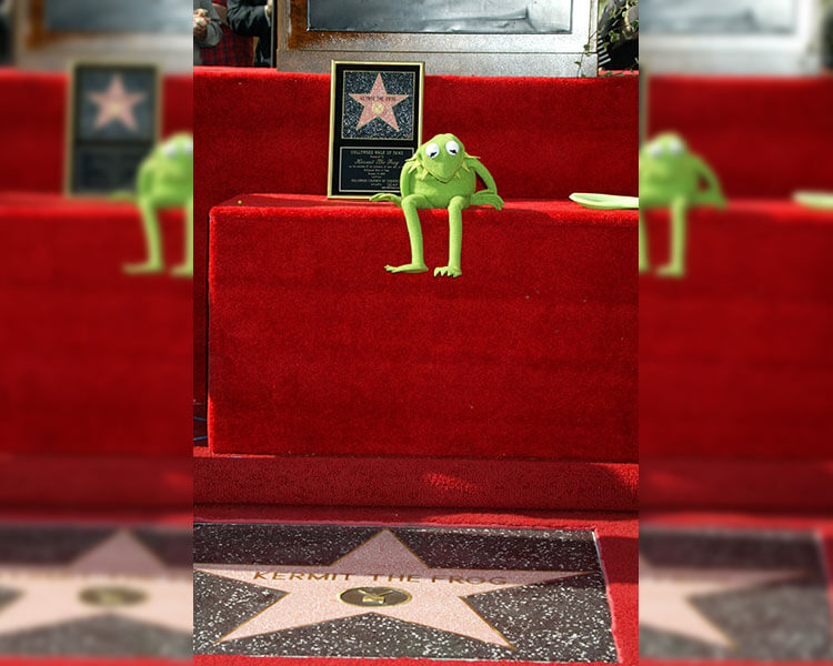 kermit-star-hollywood.jpg
