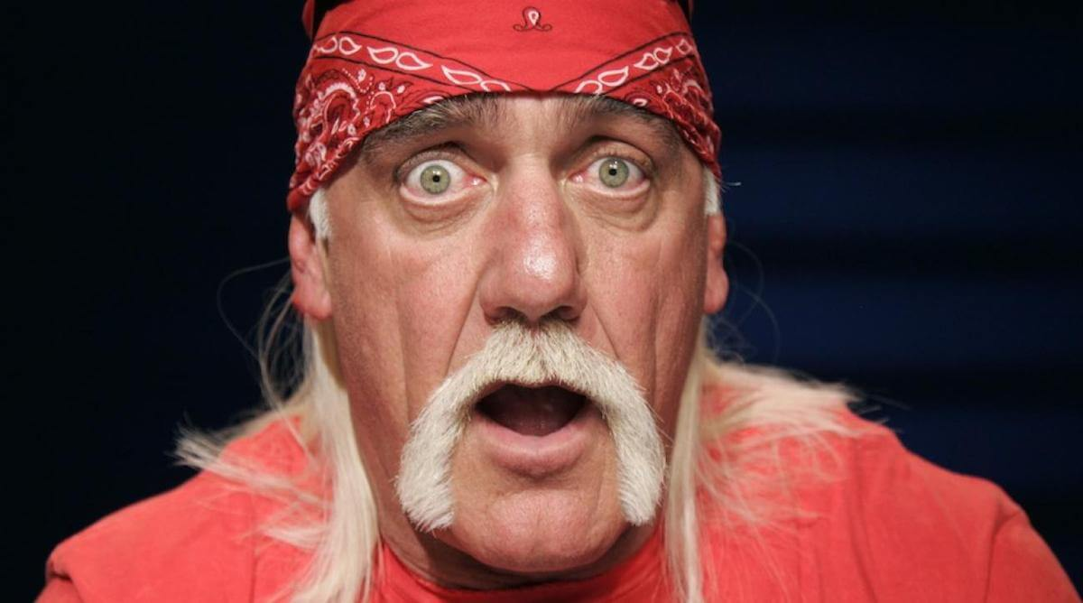 hulk-hogan-racist-comments-fired.jpg